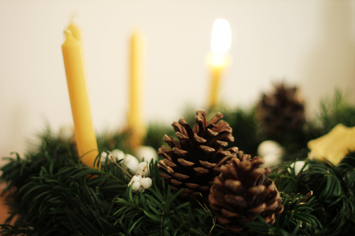 Advent_pine_cones