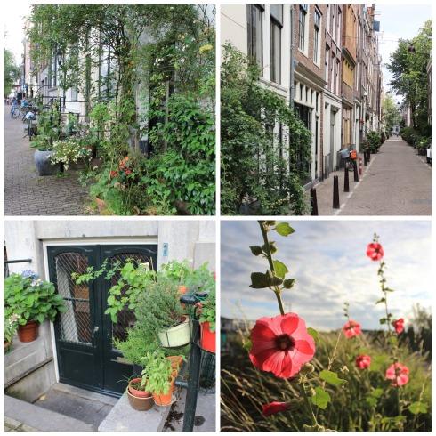 Green_Amsterdam
