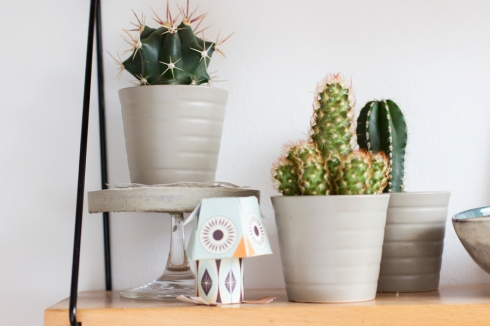 tea_shelf_decoration_cactus_stand