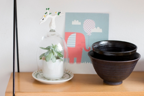 tea_shelf_decoration_plant_globe