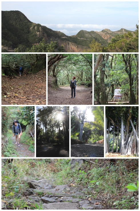 Mountain-hiking-tenerife-November