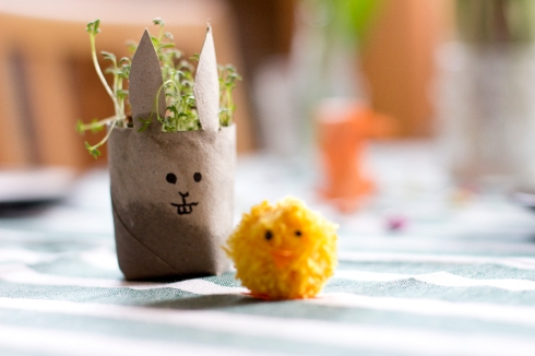 cress-bunny-with-chick