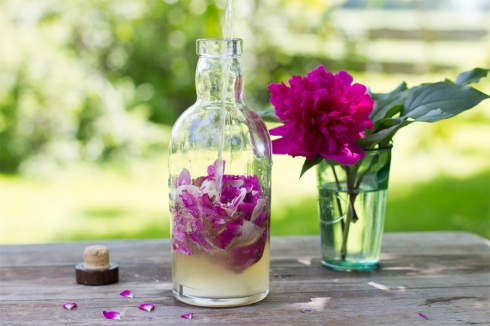 how-to-rose-flavored-vinegar